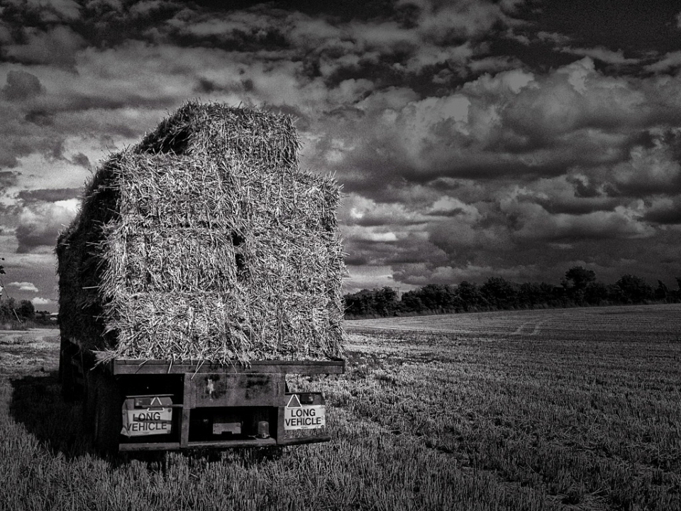 The last load , by @MickeyC  <br /> Pro Camera, Snapseed and Dramatic HD MobiMono 56