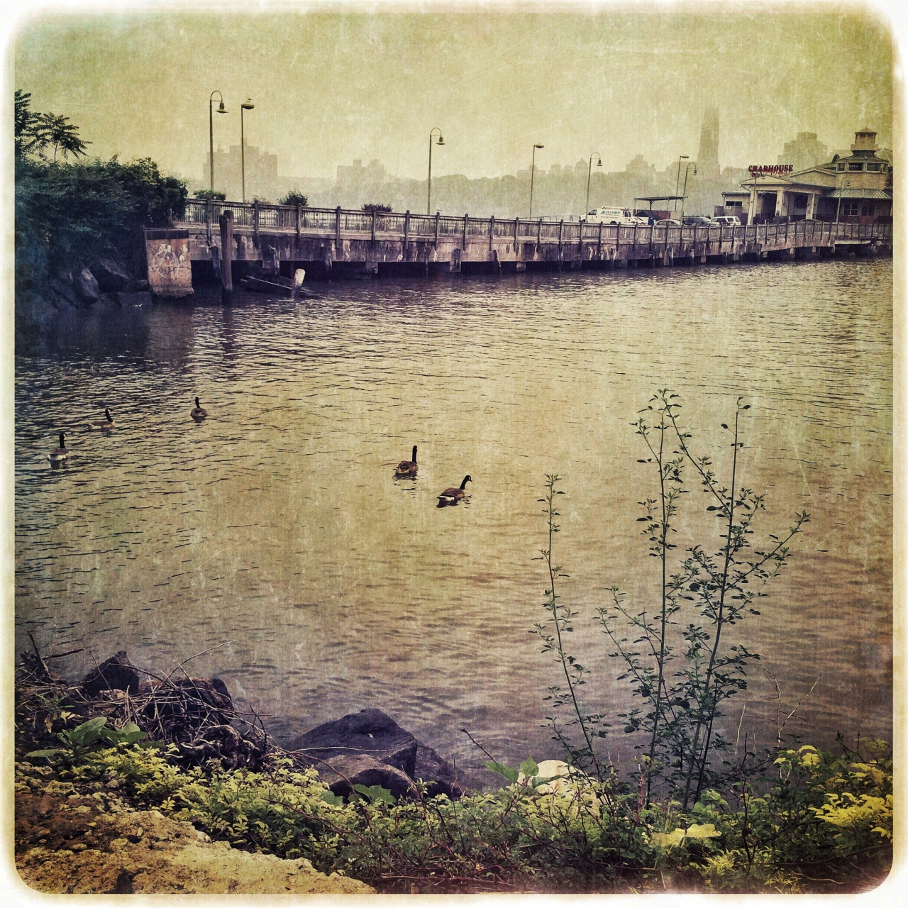 """#21DaysWORLD #newjerseyusa<br /> Hipstamatic, Snapseed, Stackables<br /> """"Along the..."""