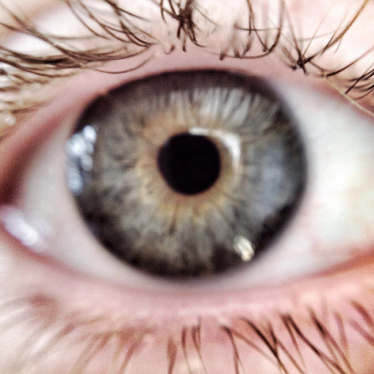 Daughters eye taken using olloclip macro lens. She has awesome lashes
