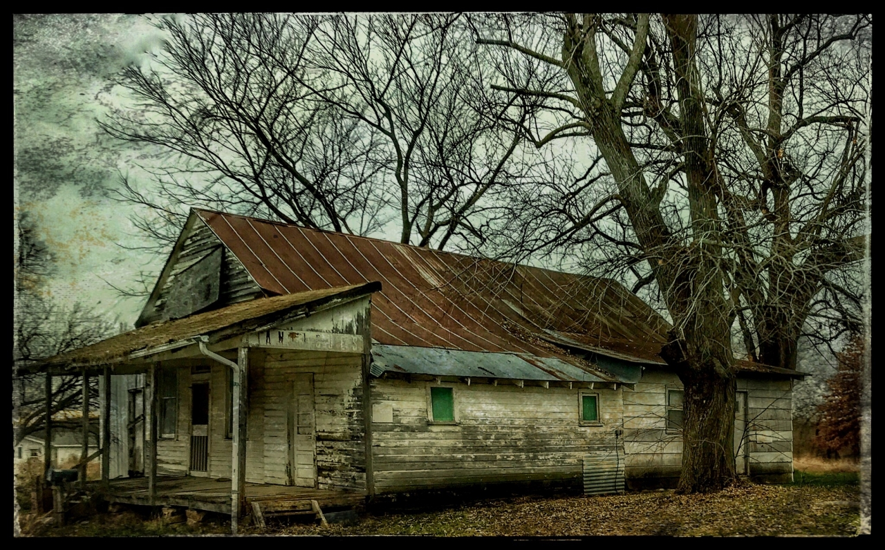 An old abandoned store in the hills of the Missouri Ozarks.  If you look closely, you can see...