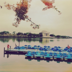 Dreamy Jefferson Memorial