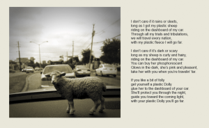 DOLLY: POSTCARDS FROM EWE