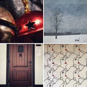 Star's Project 365 - 2017 - A year of creative curiosity.